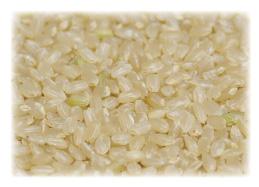 玄米を購入する農家の選び方